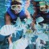 Подводное кормление рыб