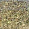 Море расскошное