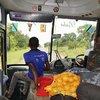 Наш супер автобус.