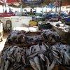 Рыбный рынок Хургады