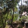 чайный дворик