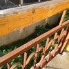 Корпус АЛЬБАТРОС. НОМЕР 210. Аварийный балкон. Не на чем сушить бельё. Нет прищепок даже! Ржавые перила.