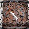 На кованих перилах будинку - форель,  символ міста