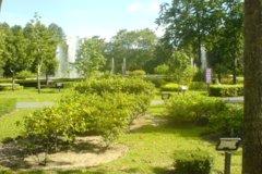 Сад Herb Garden