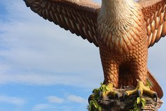 Площадь орла