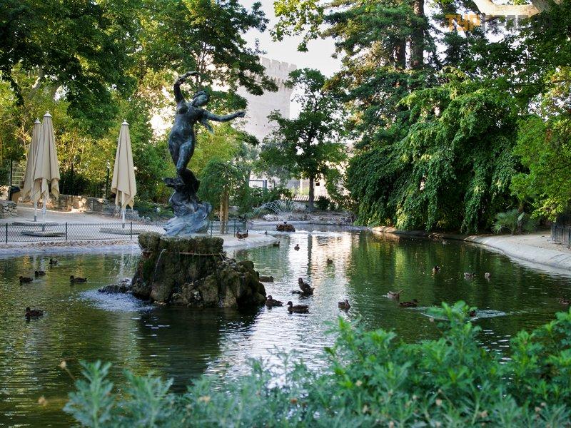 Ботанический сад Авиньона
