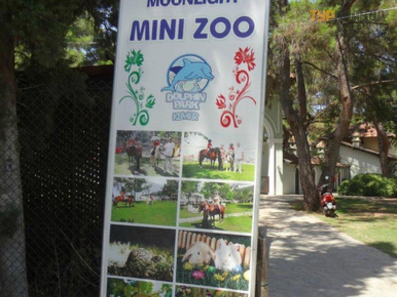 Парк Лунный Свет и дельфинарий