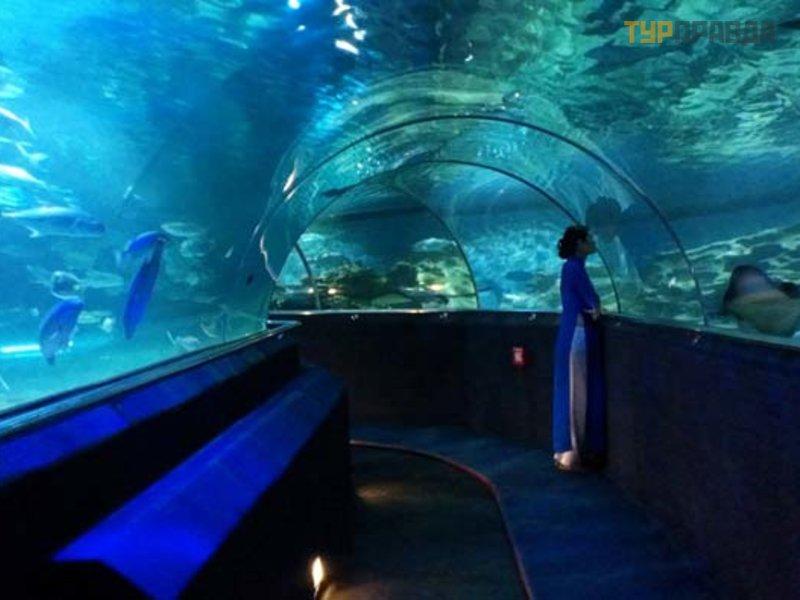 Институт Океанографии